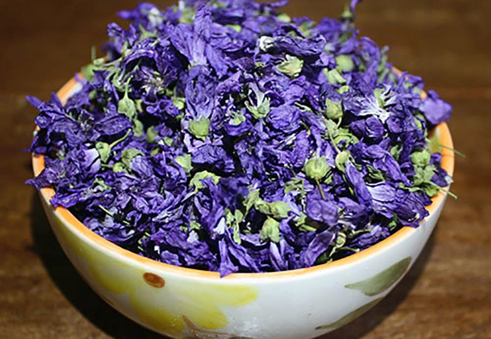 گل ختمی برای درمان گلو درد