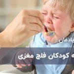 تغذیه کودکان فلج مغزی