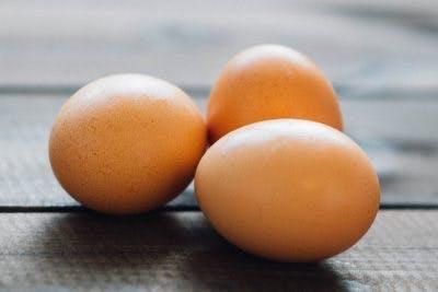 تخم مرغ، غذای مناسب کودکان فلج مغزی